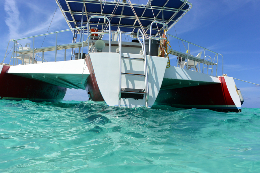 grand cayman stingray city charters