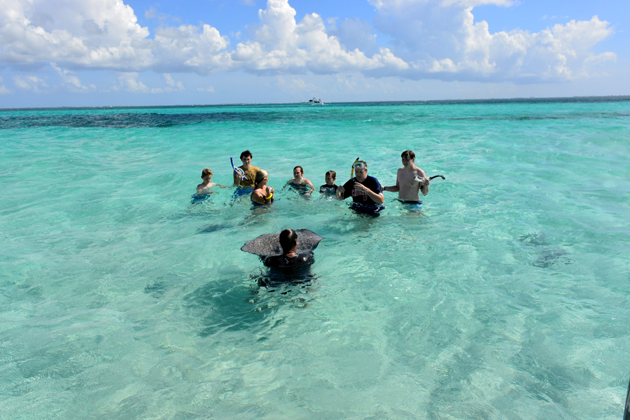 stingray city private charters