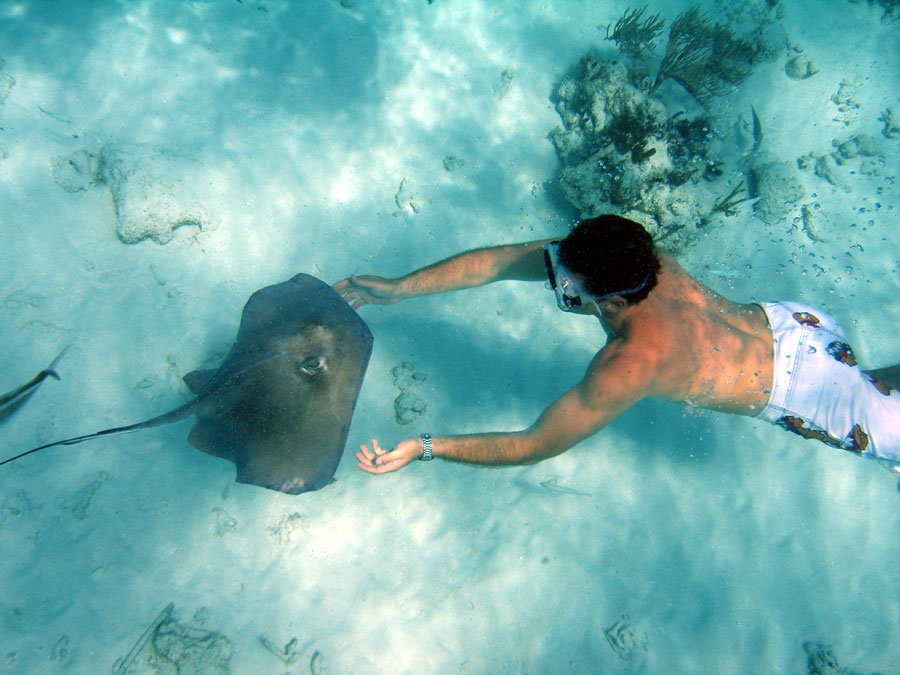 Stingray City Valley of the Rays