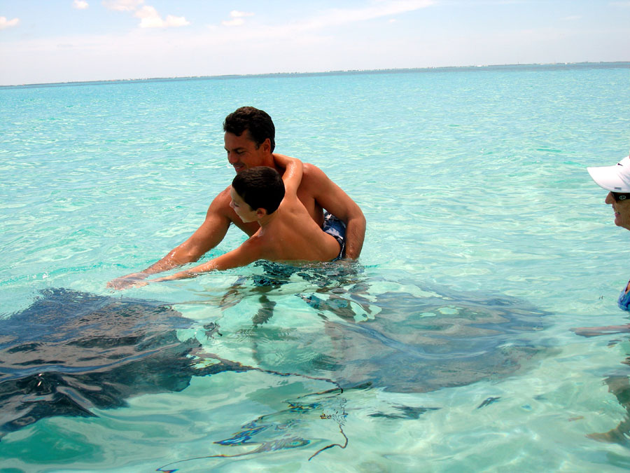 stingray city sandbar grand cayman
